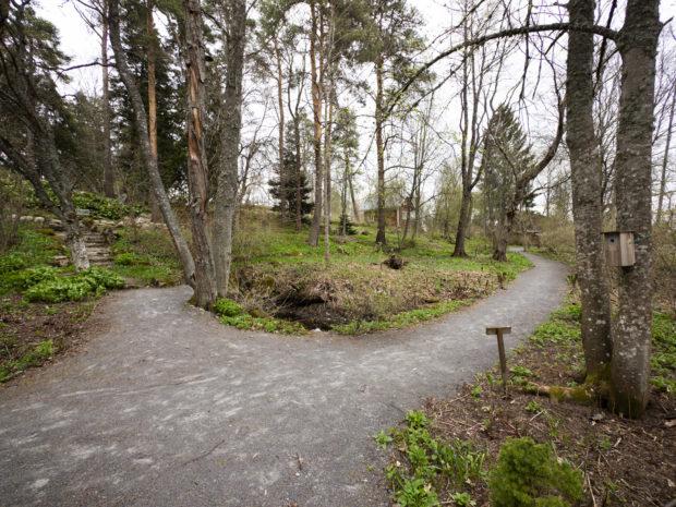 Näkymä puiston alaosan poluilta.