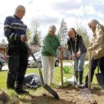 Sortavalan imelä juurtuu Juupakodin pihaan – Karjala-Seura istutti omenapuut evakkojen muistoksi