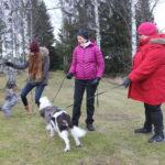 Koirapuistoyhdistys pisti pillit pussiin – pieni aktiivijoukko turhautui