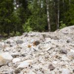 Paltanmäelle nousee näyttely, joka esittelee Oriveden kiviperinnettä – elokuussa siihen voi tutustua myös Eräjärvellä