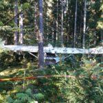 Pakkolaskun tehnyt lentäjä yritti laskeutua pellolle – osuma puiden latvaan muutti tilanteen