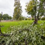Tuulen nopeus puuskissa nousi lähes 20 metriin sekunnissa – haja-asutusalueella satoja talouksia ilman sähköä