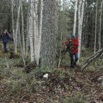 Osallistava budjetointi etenee Jämsässä – Länkipohja on mukana pilottihankkeessa, jota vie eteenpäin Elävät kylät