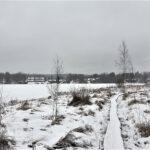 Lukijoiden kuvia: Talvinen Onninpolku, lämmikkeitä saanut Orivarsa ja nalle Kampuksella