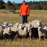 Minkälaisin odotuksin pirkanmaalaiset maanviljelijät ja maataloustuottajat käyvät vuoteen 2021?