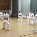 Taekwondon harjoituksissa kokeillaan nyt uusia ideoita – käyttöön on otettu muun muassa magic-ote