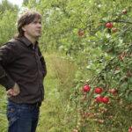 Terissaari Oy:n omenatarha on hehtaareissa Suomen suurin luomuhedelmätila – Johannes Vuorinen on investoinut jo reilusti yli puoli miljoonaa euroa mehustamoon, jossa tuotetaan myös siidereitä