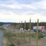 Valmistunut ja käyttöön otettu ohituskaistapari tuo ensiapua ysitielle – ensi vuonna ohituskaistoja parannetaan Oriveden keskustan lähellä